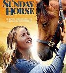 A-Sunday-Horse-2015-352x520.jpg